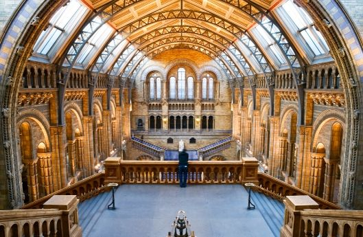 greatlittlebreaks - uk virtual tour - natural history museum